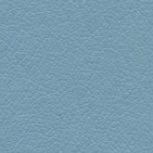 Blue Bird 300x300 1 - Crow Works